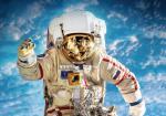 Космонавты. Звездные трассы землян