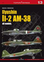 Kagero (Topdrawings). Ilyushin Il-2 AM-38 all models